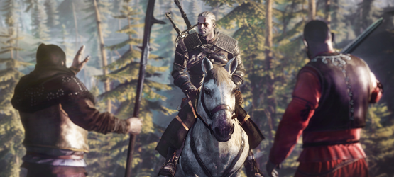 The Witcher 3 The Wild Hunt 2