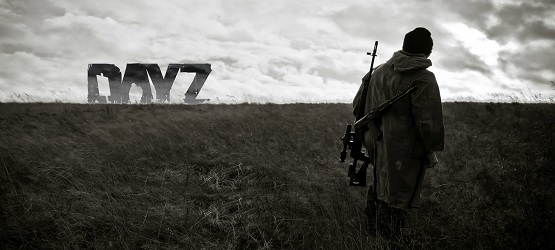 DayZ has been hugely successful