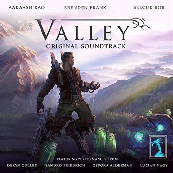7. Valley by Aakaash Rao